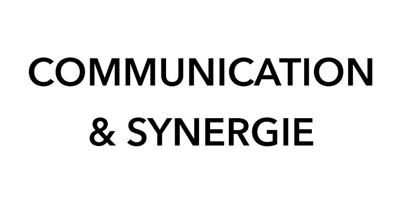 synergie-pnl.com